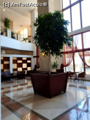 foto-vacanta la Melia Grand Hermitage Hotel
