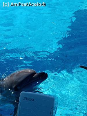 foto-vacanta la Adaland Aquapark