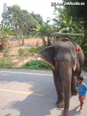 foto-vacanta la Descoperă Thailanda