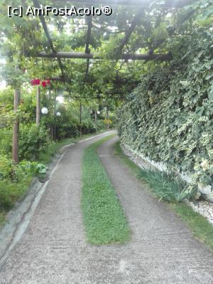 foto-vacanta la Villa Dimitra