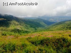 foto-vacanta la Descoperă zona Arieșeni