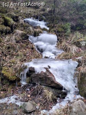 foto-vacanta la Lacul de acumulare Bicaz / Izvorul Muntelui