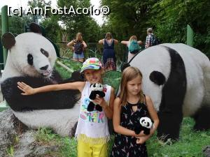 foto-vacanta la Zoo Vienna