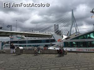 foto-vacanta la Descoperă Rotterdam şi împrejurimile