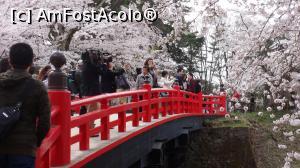 foto-vacanta la Vacanța în Japonia