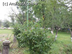 foto-vacanta la Descoperă zona Piatra Neamț