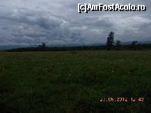 foto-vacanta la Rezervația naturală de narcise [Dumbrava Vadului]