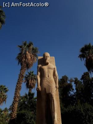 foto-vacanta la Descoperă Cairo