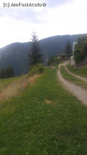 foto-vacanta la Descoperă zona Vidra-Ciungetu