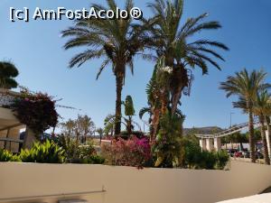 foto-vacanta la Albatros Spa & Resort Hotel