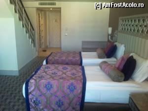 foto-vacanta la Royal Alhambra Palace Hotel [Colakli]