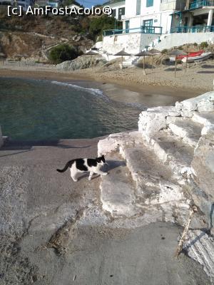foto-vacanta la Descoperă insula Ikaria