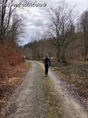 foto-vacanta la Descoperă zona Beiuș-Ștei-Chișcău