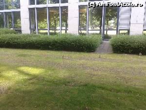 foto-vacanta la Descoperă Dusseldorf
