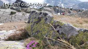 foto-vacanta la Redescoperă Masivul Parâng