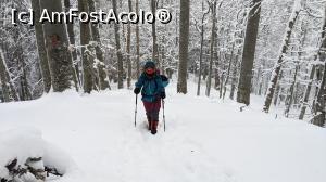 foto-vacanta la Drumeții în Munții Baiului (Gârbova)