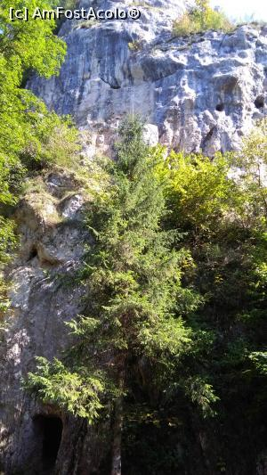 foto-vacanta la Descoperă împrejurimile Brașovului