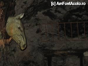 foto-vacanta la Peștera (mina) Seegrotte [Hinterbruhl]