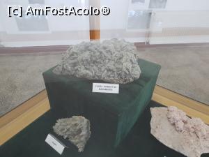 foto-vacanta la Muzeul ''Flori de Mină''