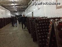 foto-vacanta la Combinatul de vinuri (crama) Cricova