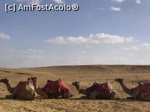 foto-vacanta la Descoperă Hurghada