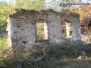foto-vacanta la Descoperă Caransebeș și împrejurimile