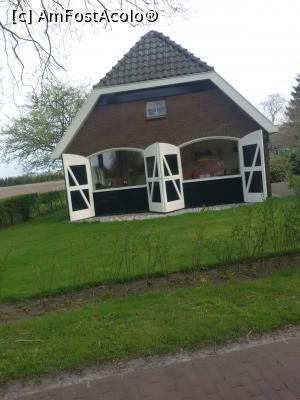 foto-vacanta la Musai de văzut în Olanda