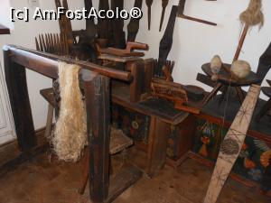 foto-vacanta la Muzeul Neculai Popa [Târpești]