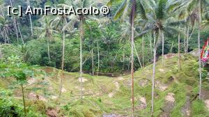 foto-vacanta la 'Opționale' din Nusa Dua