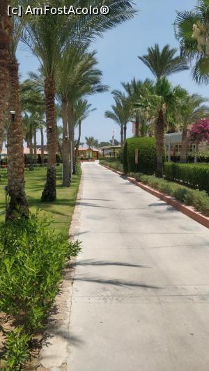 foto-vacanta la TUI Magic Life Club Sharm el Sheik Hotel