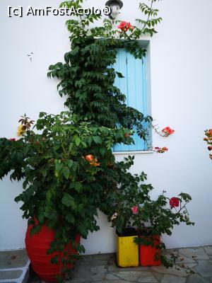 foto-vacanta la Unde mâncăm în insula Milos?