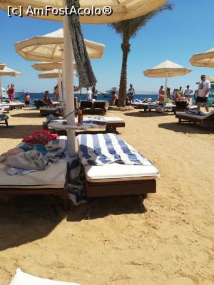 foto-vacanta la La Rosa Waves Beach Aqua Park Hotel